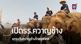 20190525elephantA.png
