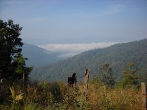 ラフー族村から望む雲海