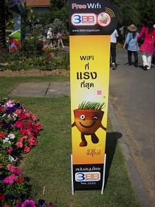 20111216hanahakuD.jpg