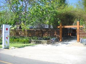 20120206hanahakuA.jpg