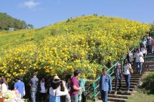 20121113flower.jpg
